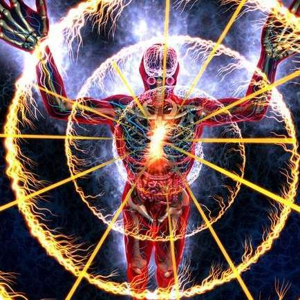 Mimosa hostilis root bark? - The Psychedelic Experience - Shroomery