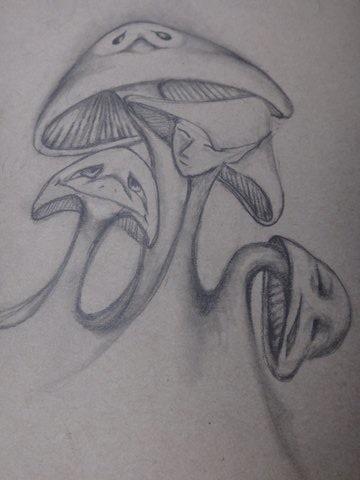 Creation1