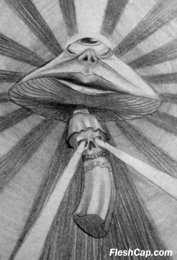 Fleshcap Mushroom by Eddie D