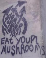 EatYourMushrooms