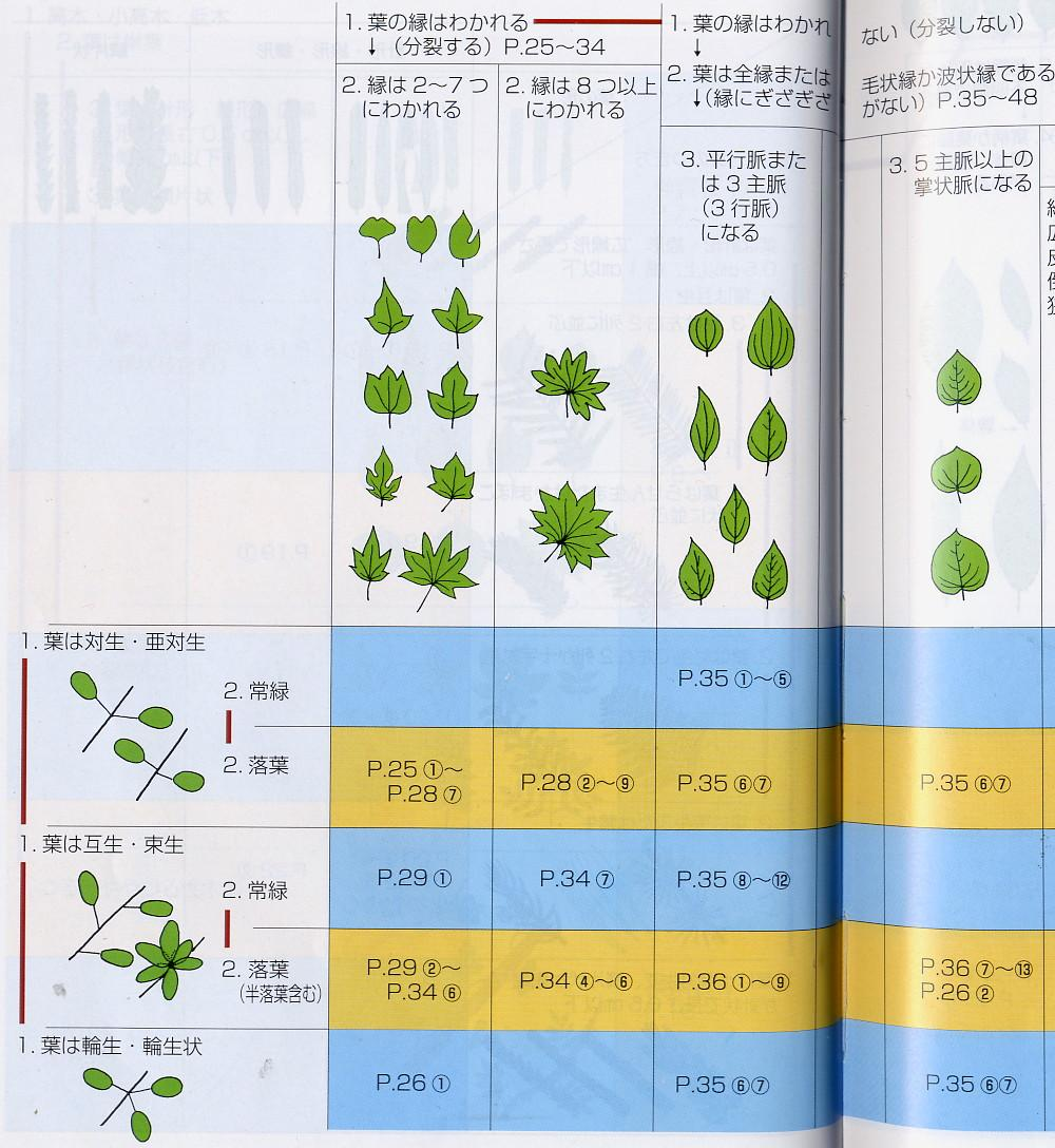 Leaf Chart http://www.shroomery.org/forums/showflat.php/Number/4927070