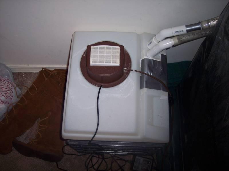 Cool Mist Ultrasonic Humidifier Coak Leaf  L Multi Color Room Humidifiers