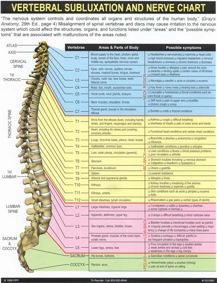 Spine Symptoms Chart Spine Nerve Pain Chart