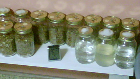 How to store inoculated jars in a contam rich area? (First