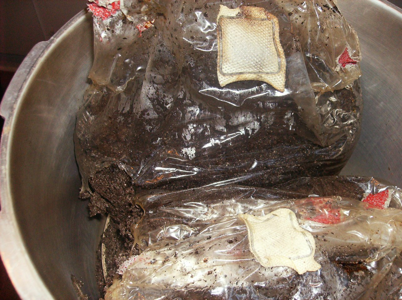 Spawn Bags PC FAIL   advice? - Mushroom Cultivation