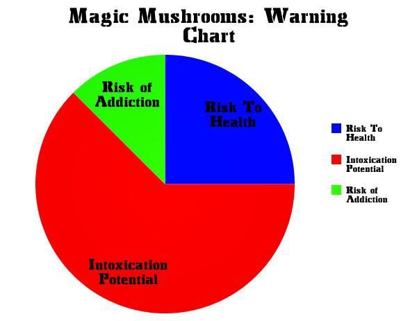 Legal high drugs to be banned immediately UK Shroomery News