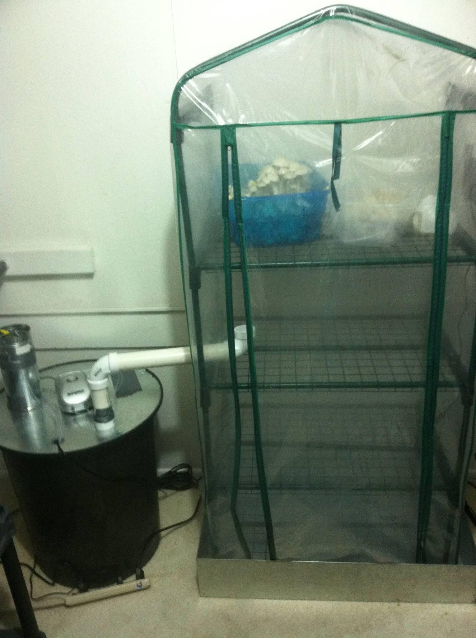 Bulk Humidifier Mushroom Cultivation Shroomery Message Board #1C505E