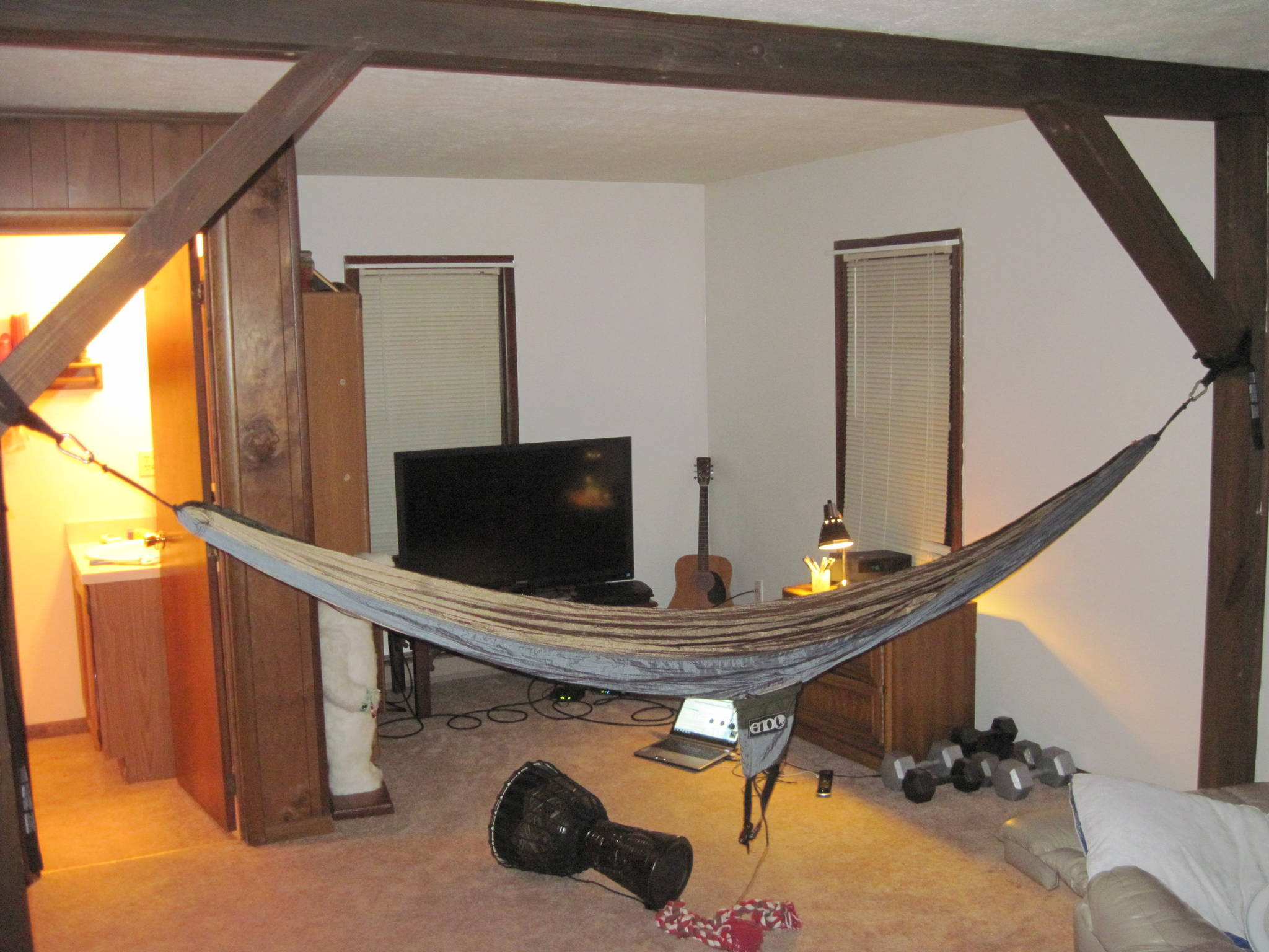 My living room supports hammocks the pub shroomery for Living room hammock