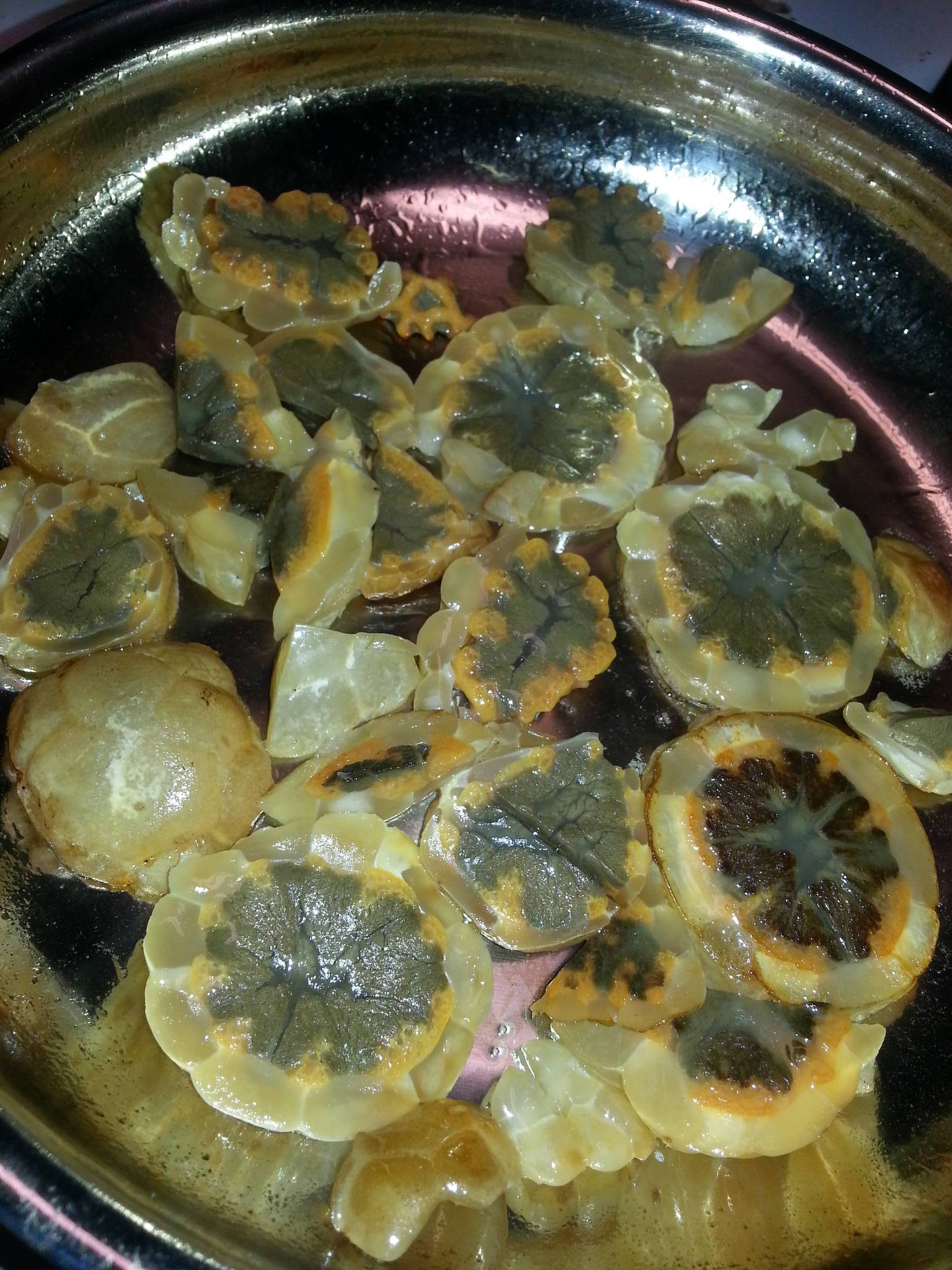 So i ate a Clathrus ruber egg    - Mushroom Hunting and