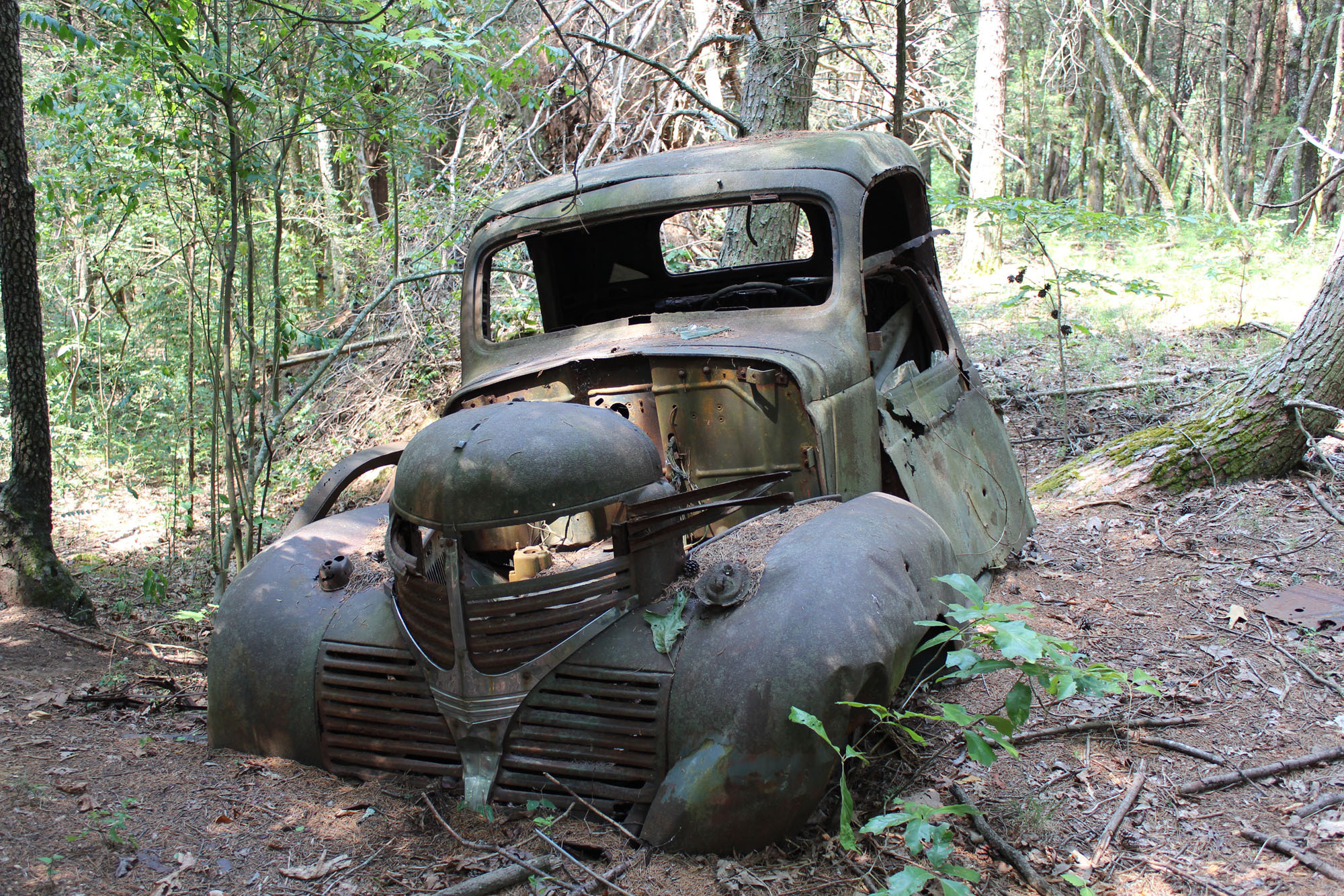 Mossy Used Car Inventory