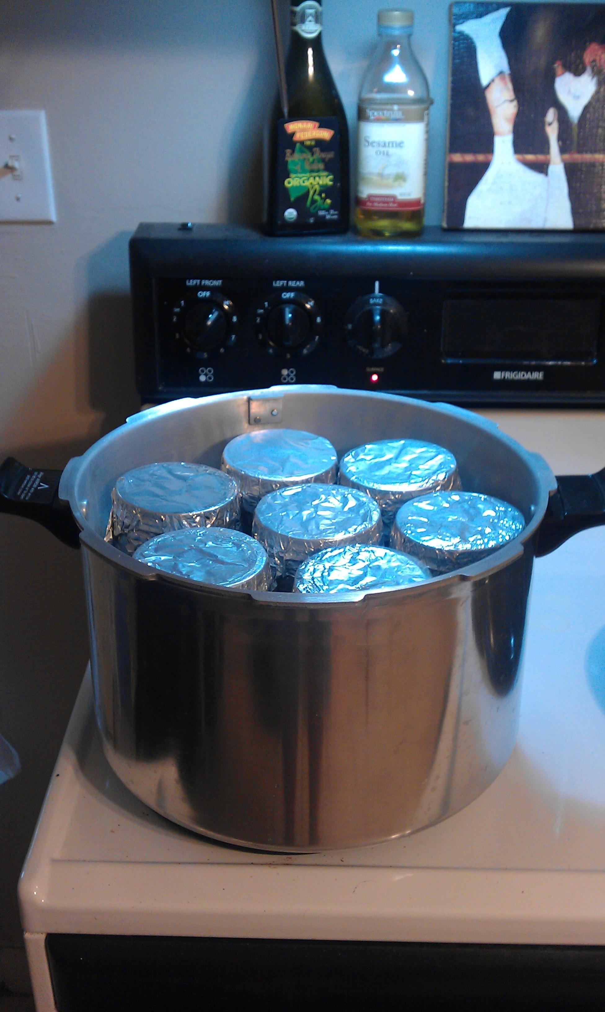 Pressure Cooking Basics - Mushroom Cultivation - Shroomery