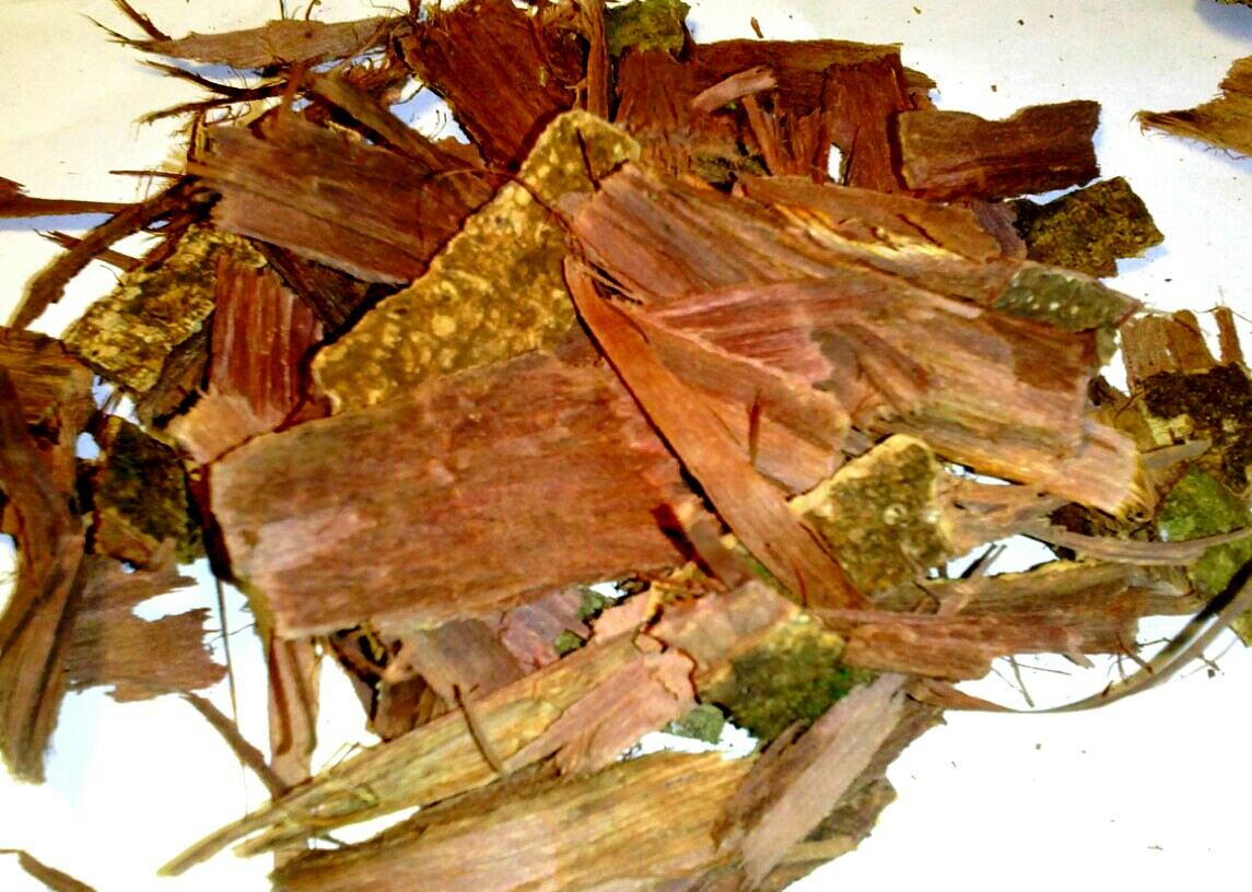 Making DMT for the first time from acacia confusa root bark