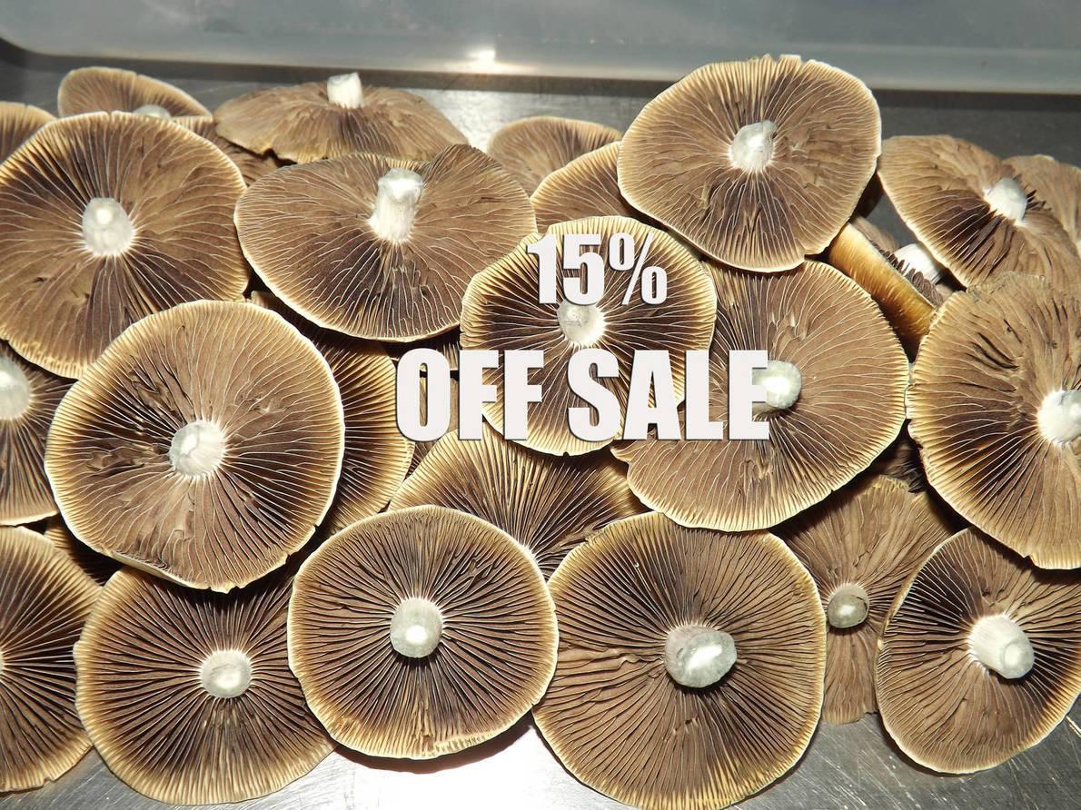 Sporeworks discount coupon
